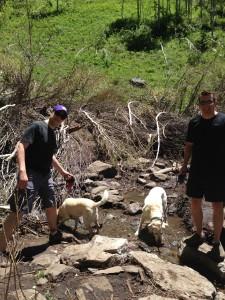 C&C in the creek!