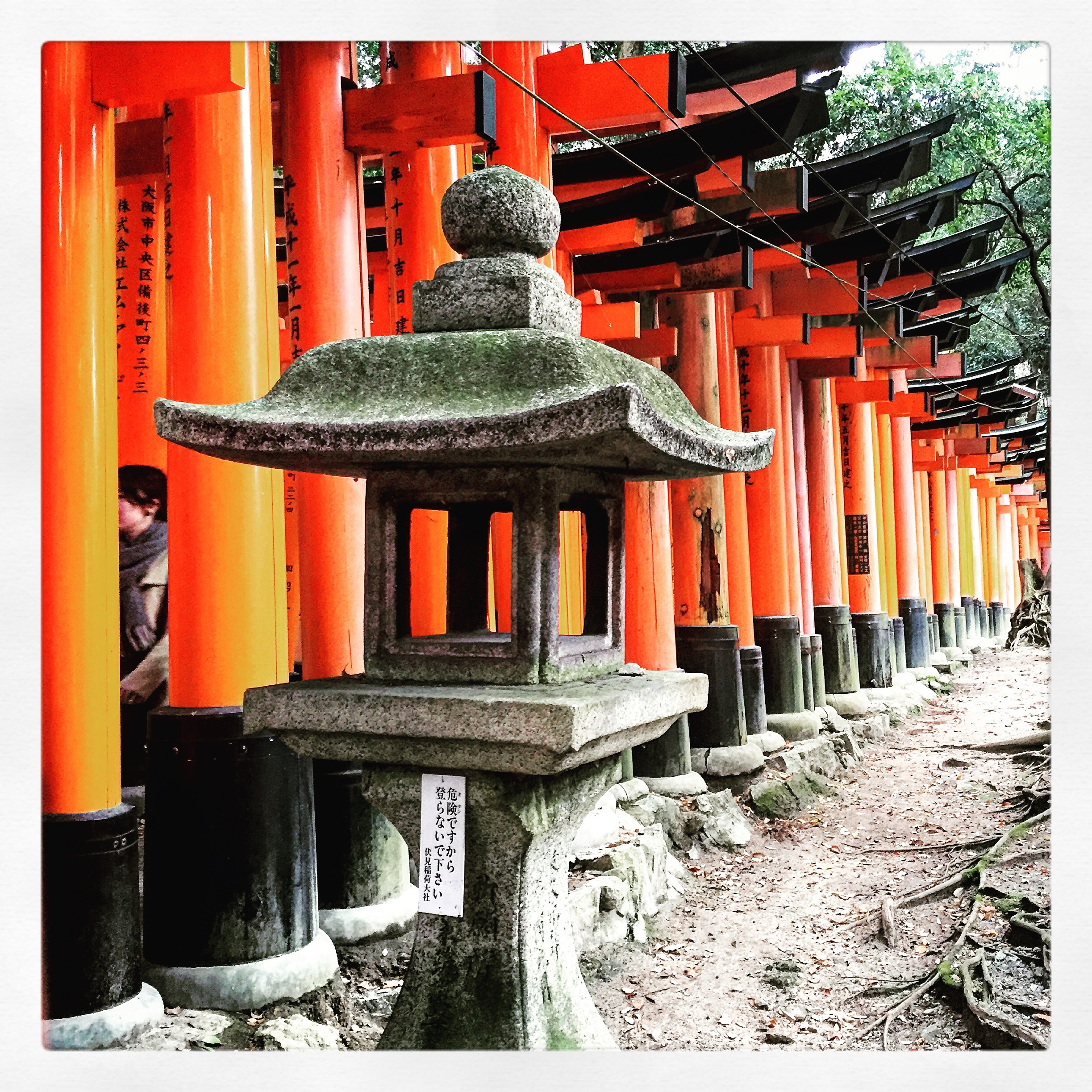 One of my favorite pictures from my day in Kyoto, Japan: The Torii, or gates, of Fushimi Inari-Taisha.